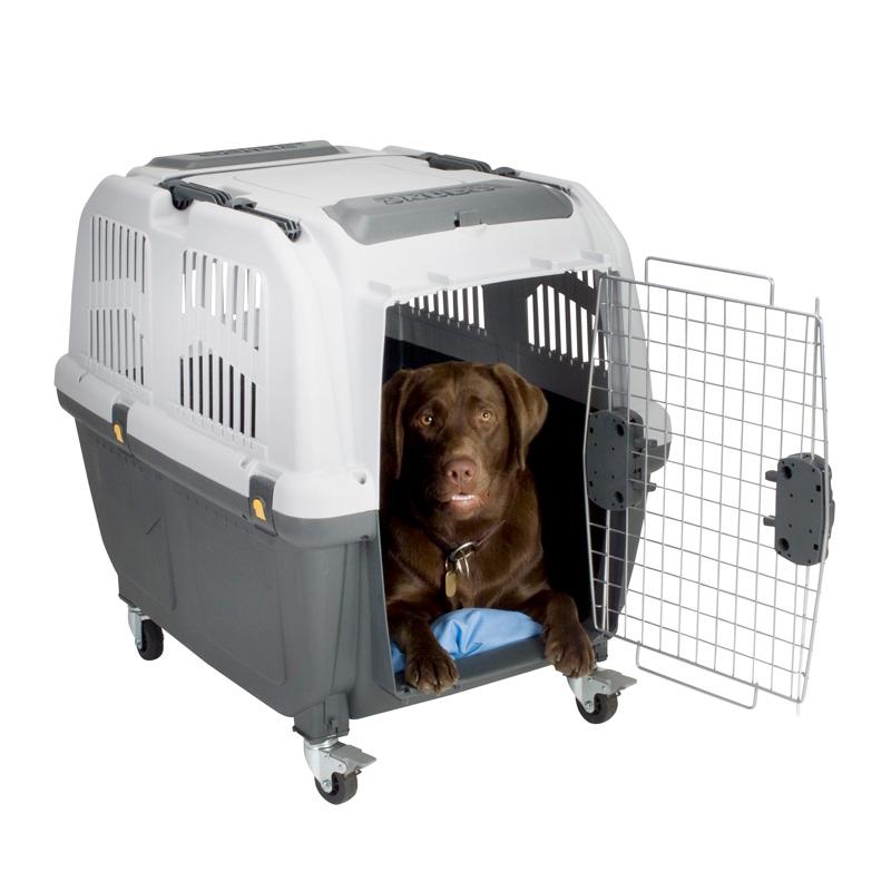Transportbur til hunde