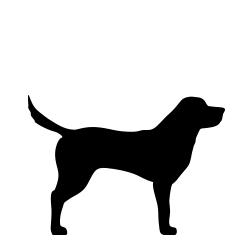 Seler til store hunde 25-45 kg
