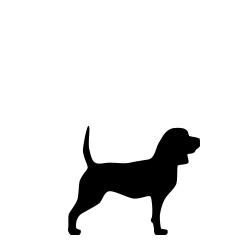Seler til hunde mellem 10-25 kg