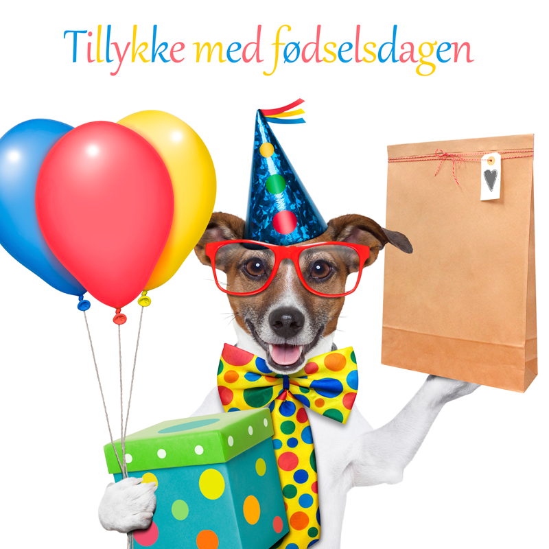Fødselsdagsgaver til hunde