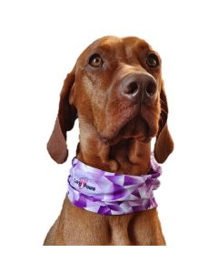 Smart bandana til hund