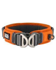 Urban Explorer™ hundehalsbånd-XS-Orange