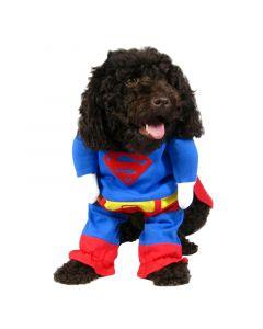 Supermand-kostume til hunde