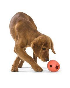 Rumbl, tyggestærkt aktivitets legetøj
