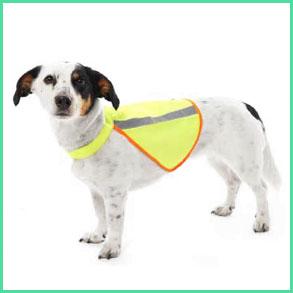 Hundetøj med reflekser