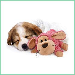 Legetøj til hundehvalpe