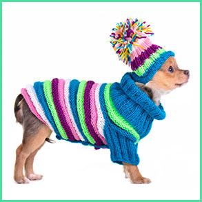 Vintertøj til hunde