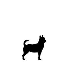 Hundefoder til hunde under 10 kg.