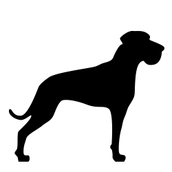 Seler til kæmpe hunde > 45kg