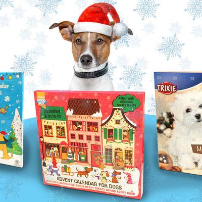 Julekalender til hunde - Hurtig levering