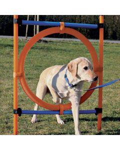 Agility Ring til hunde