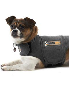Thundershirt den bedste løsning mod angst  hos hunde