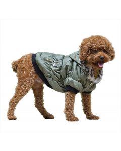 Grøn hundevinter jakke